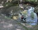 Pepper in the creek